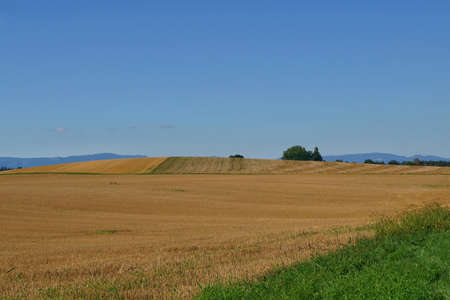 beautiful landscape view of the swiss countryside in jegenstorf