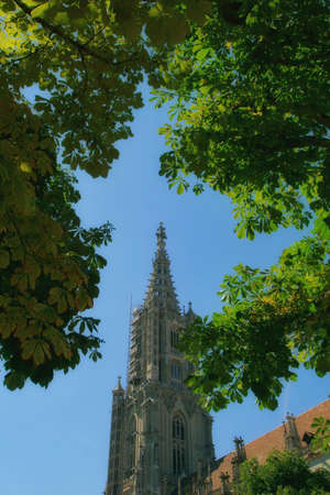the beautiful architecture of the Berner münster cathedral in the city center of Bern, Switzerland