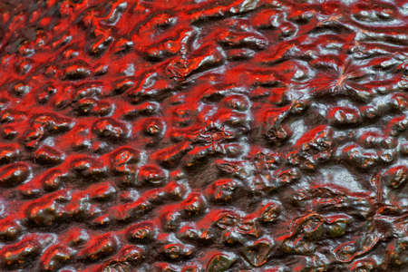 Beautiful texture and details, close up macro photo of an avocado skin. at the Bahnstadt in Heidelberg, Germany