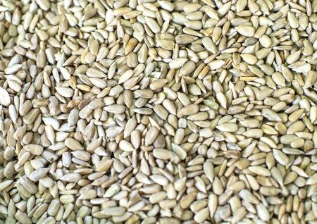 sunflower seeds background. Standard-Bild