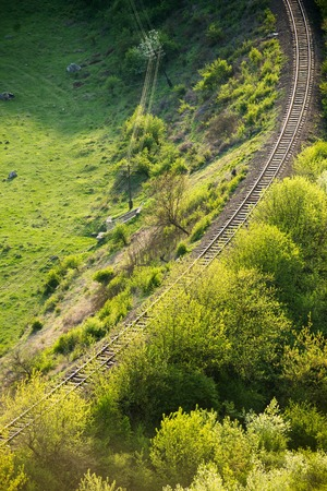 curving: Curving Railway Track through a summer Forest.