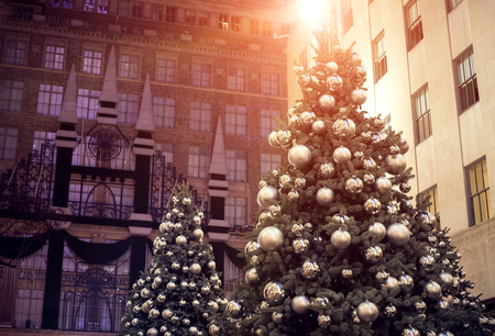 decorated Christmas tree lighting in the city.
