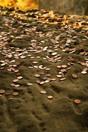 money-rain Stok Fotoğraf