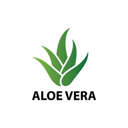 Aloë vera natuur blad pictogram, logo vectorillustratie