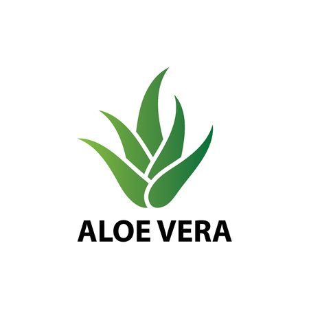 Ikona liścia natury aloesu, ilustracja wektorowa logo
