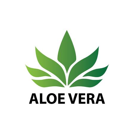 Aloe vera nature leaf icon , logo vector illustration Illustration