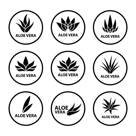 Aloe Vera nature leaf icon set vector illustration. 向量圖像