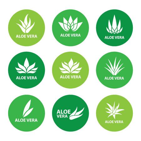 Aloe vera nature leaf icon, logo vector illustration