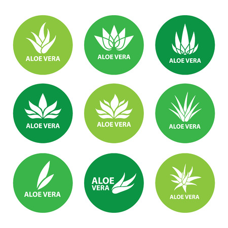Aloe vera nature leaf icon, logo vector illustration