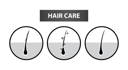 Hair problem to care step vector illustration