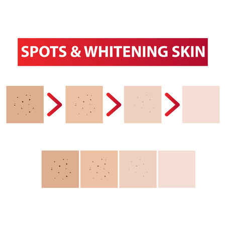 Spots skin to clear process and whitening tones vector illustration