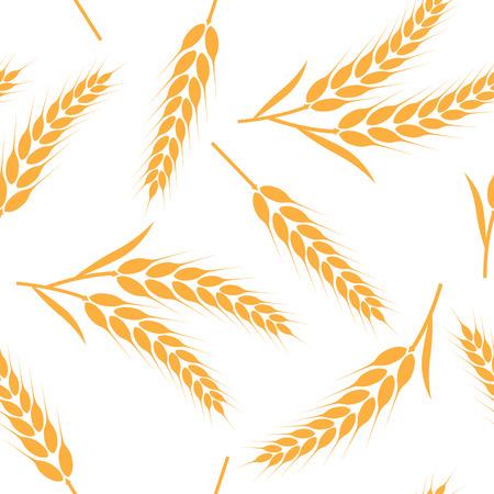 Illustration vectorielle de riz, blé, orge et avoine sans soudure de fond