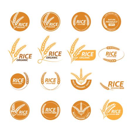 Collection de conception graphique de riz avec image et texte Illustration.
