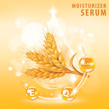 Rice , wheat , barley and oat vitamin  banner vector illustration