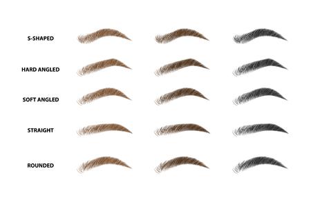 Arten von Augenbrauen Vektor-Illustration