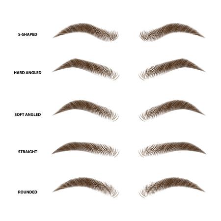 Tipi di sopracciglia illustrazione vettoriale Vettoriali