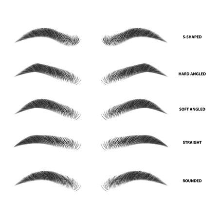 Tipos de cejas ilustración vectorial