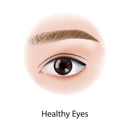 Augenkrankheiten Vektorillustration Vektorgrafik