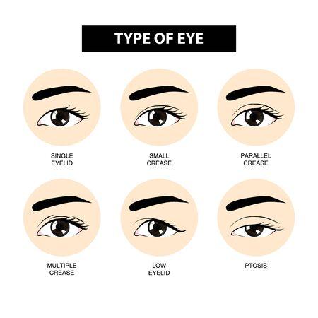 Type ooglidplooi vectorillustratie