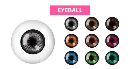 Eyeball and color of irises vector illustration