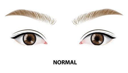 Normal, perfect eyes vector illustration Illustration