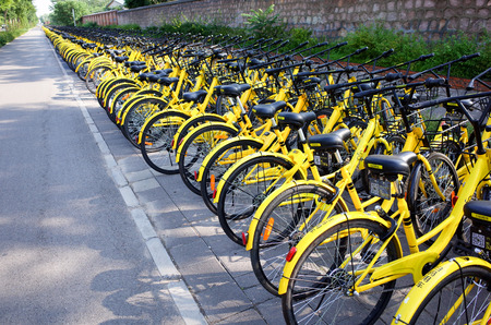 shared sharing: Beijing,China-June 2017-Rows of shared bicycle named OFO(small yellow bike) beside  road in China of Beijing.