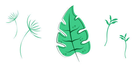 Set of green leaves illustration. High quality nature vector.