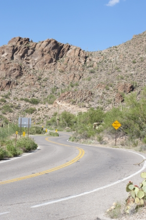 A highway leading back to Tucson from Saguaro National Park West photo