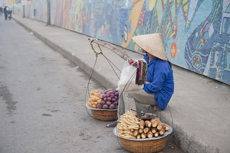 Vietnamese Vendor selling produce along the Hanoi Cermaic Road