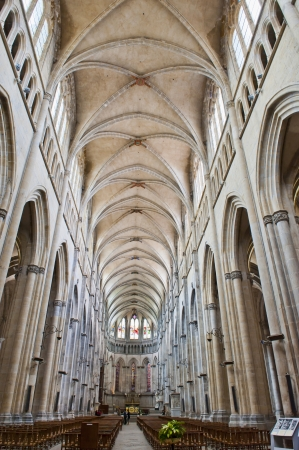 Gothic Architecture of Cathedral Saint Maurice