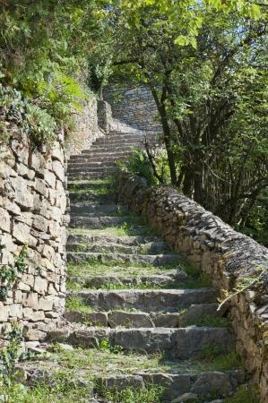 stone steps: Steps up Saint-Laurent Hill