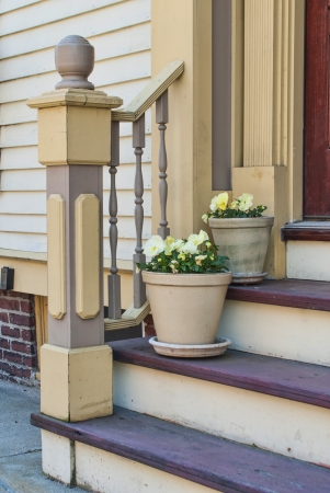 Door Steps with Flowerpots