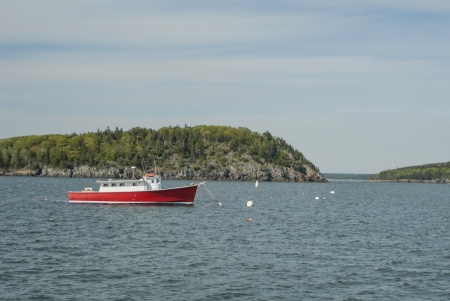 boat in Frenchman Bay photo