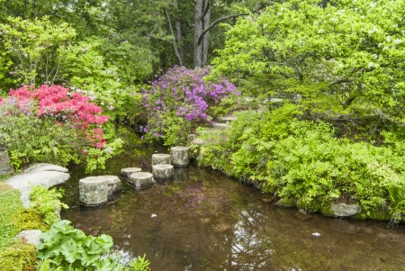 stepping stones across stream at Asticou Azalea Garden
