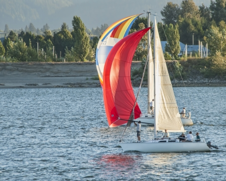 Wind in the sails of small boats on the Columbia River