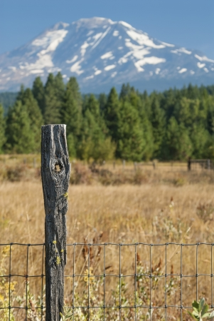 Fence Post with Knot Hole near Mount Adams
