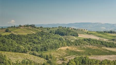 Sanften Hügel der Toskana Standard-Bild