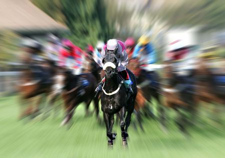 cavallo in corsa: Prese a Plumpton UK