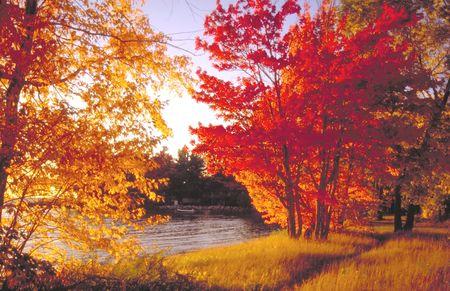fall colours near north bay ontario 写真素材