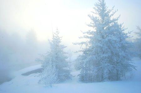 extreme cold scenic [-35c]