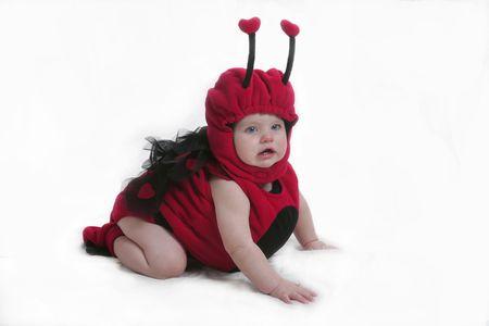 designer baby: ladtbug suit