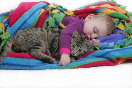 ilove my kitten 写真素材