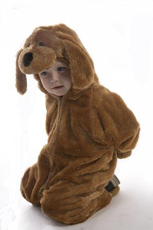 in doggy suit Stock fotó