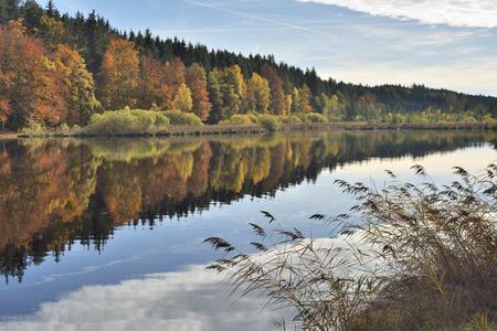 autumn colouring: Autumn Colouring at the Lake