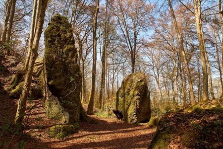 travel to Germany - green forest in front of cave in Nature and Geopark Vulkaneifel near Gerolstein, Birresborn Luftkurort.
