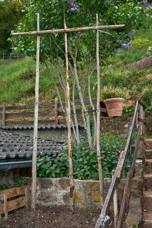 An organic garden on a spring morning. Banque d'images