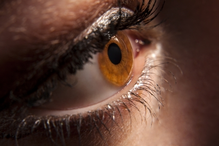 dilate: Close up of beautiful woman`s open brown eye peeping in darkness