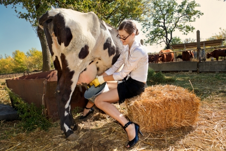 bovine: Young woman milking cow on farm