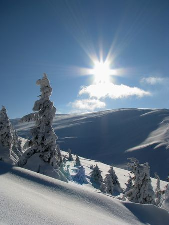 Winter landscape.Snowbound firs in the mounts. Frost and sun it is magic day. Stock Photo - 6074071