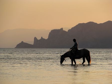 Thirsty horse. Horseman in the sea. Drinking hors in the evening. Stock Photo - 6149757